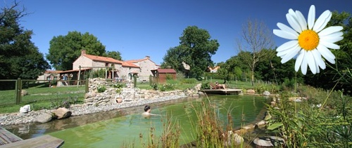 gite-nature-piscine-naturelle-vendee